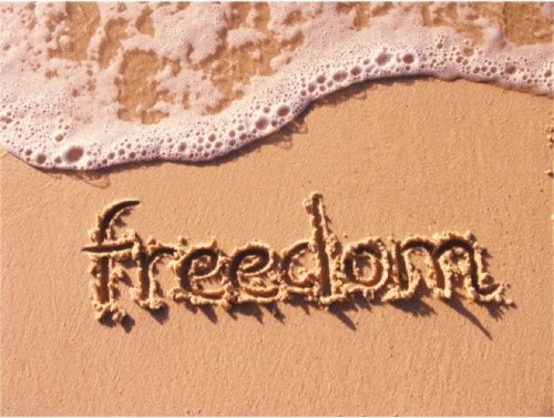 自由の内訳